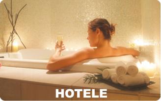 Druskieniki Druskininkai Rezerwacja Hotel